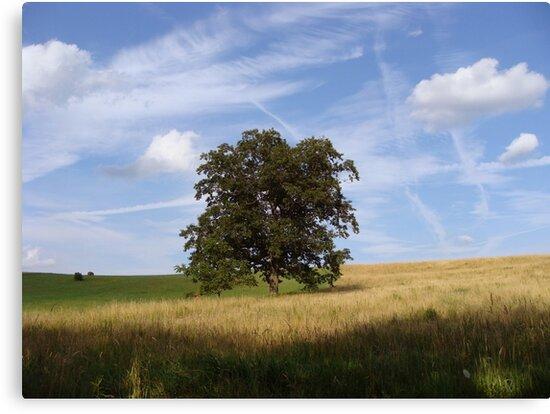 Tree of Life by vigor