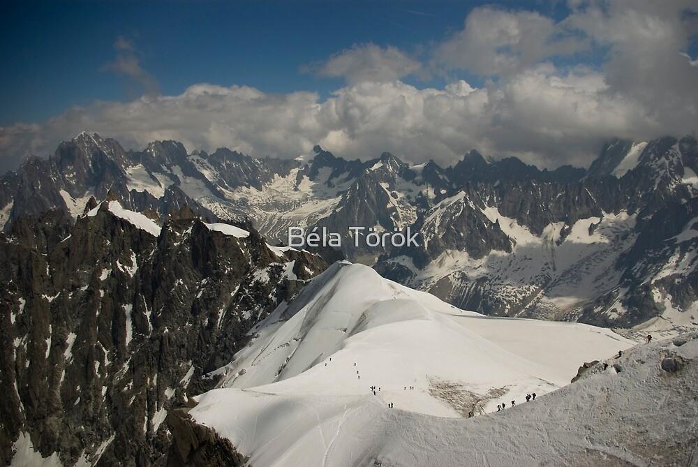 View from Aiguille du Midi by Béla Török