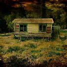 Little House by Lynne Haselden