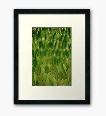 Leaves - Nature Framed Print