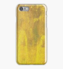 Two Hooded Figures in the Summer Woods iPhone Case/Skin