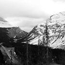 Icefields  Parkway - Banff Canada by Barbara Burkhardt