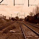 No trains here! by su2anne
