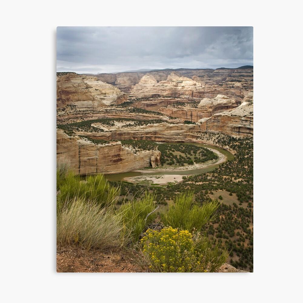 Yampa River Canyons Canvas Print