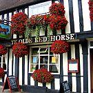 Ye Olde Red Horse by hjaynefoster