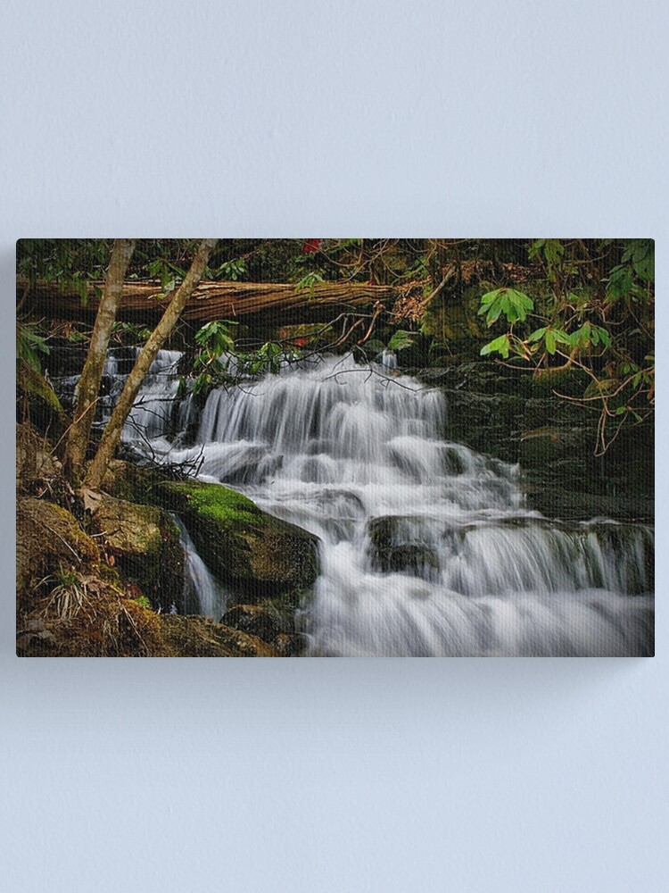 Alternate view of Soco Falls Canvas Print