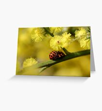Love Bugs Greeting Card
