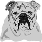 English Bulldog by ragtagart