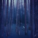 Misty forest with fireflies by Sybille Sterk