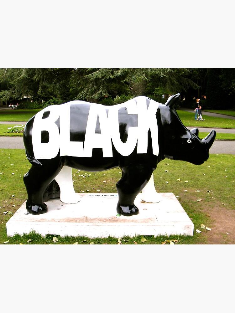 BLACK by robsteadman