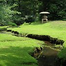 Peaceful Creek by Gordon Taylor