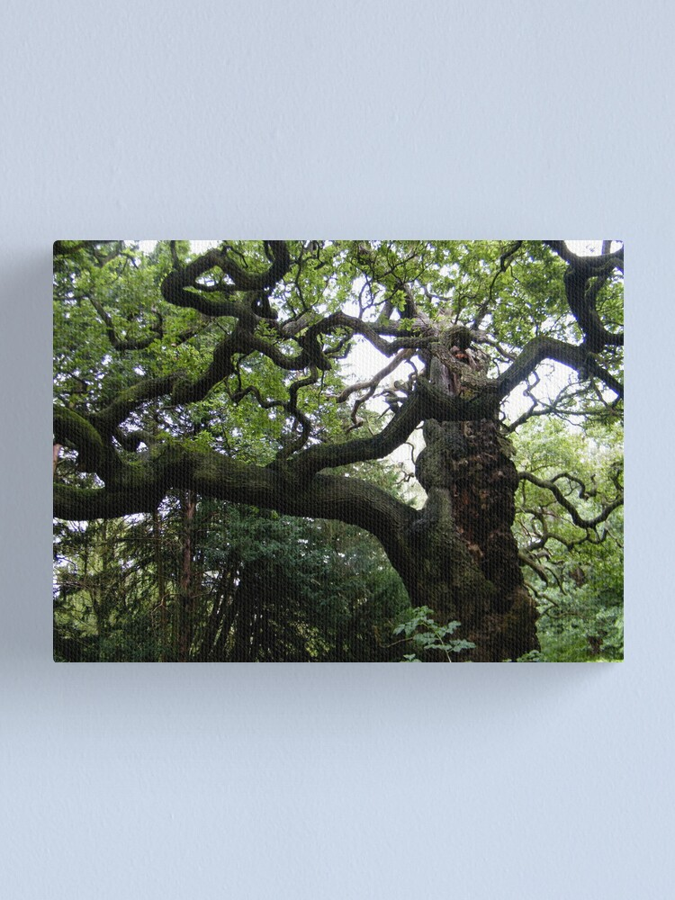 Alternate view of Sherwood Forest 1 Canvas Print