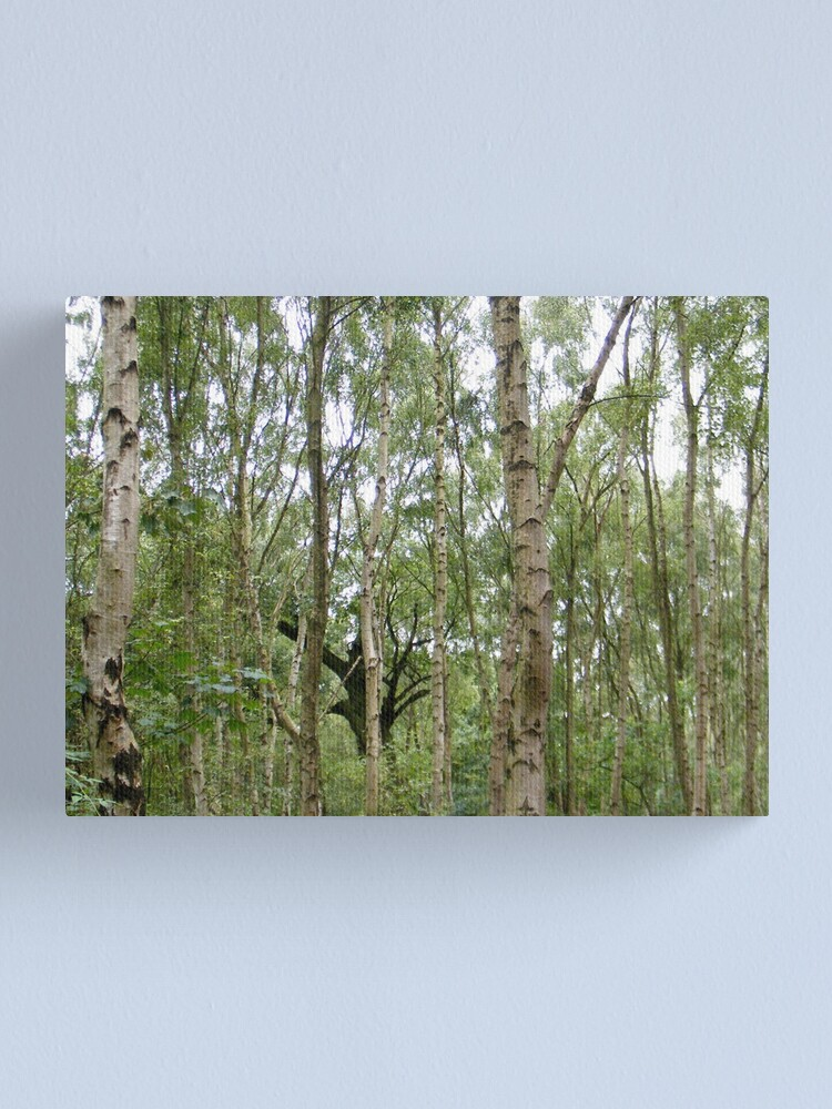 Alternate view of Sherwood Forest 3 Canvas Print