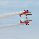 Breitling Wing Walkers by bubblebat