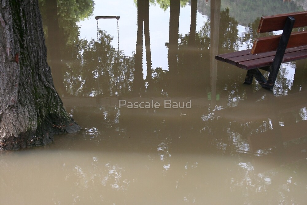 It rained continuously all day by Pascale Baud