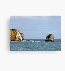 Chalk Cliffs, Freshwater Bay Canvas Print