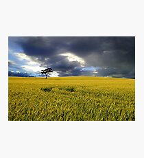 Stormy Australian Rural Landscape Photographic Print