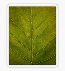 Leaf - HD Nature Transparent Sticker