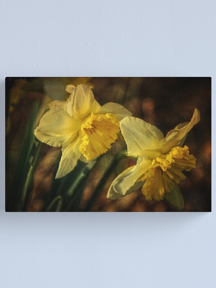 Alternate view of Daffodil Afternoon Canvas Print