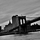 Manhattan from Brooklyn 3 by zarkhoc