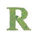 Alphabet R - Hedgehog Colour  by Brett Miley