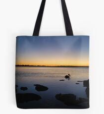 Morning Glide 21-8-2010 Tote Bag