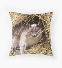 Hide-n-Seek Throw Pillow