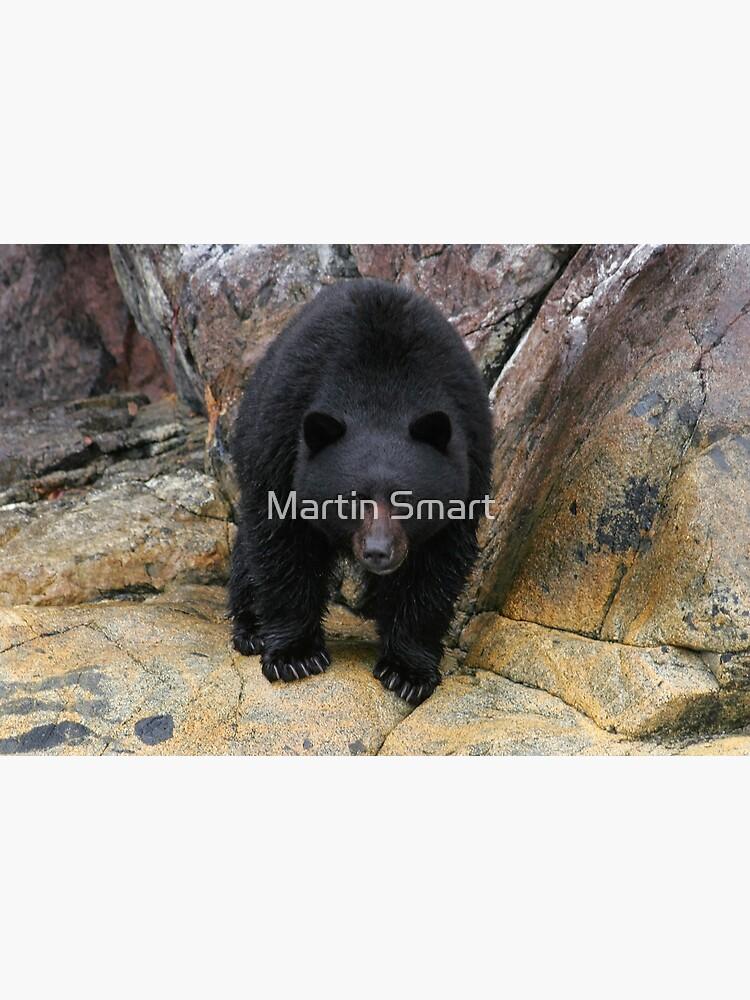 Bear Rock by MartinSmart