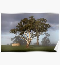 The Tank, The Tree & The Windmill Poster