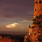 Last Light on the Watch Tower by Linda Sparks
