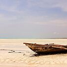 Stranded at Low Tide by Scott Carr