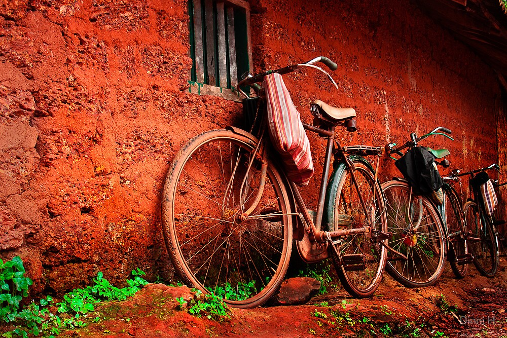 resting bicycles by Dinni H