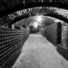 Spooky Cellar by Jared Revell