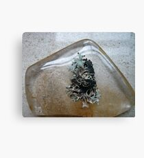 Crystal and Tree Canvas Print