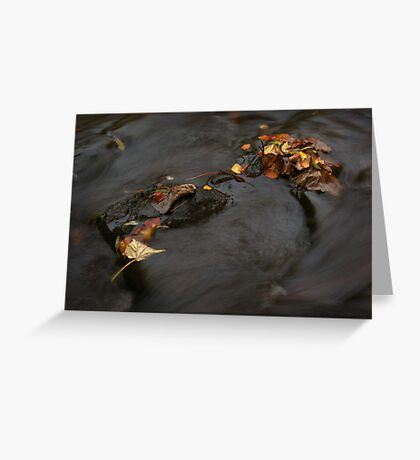 river in autumn I Greeting Card