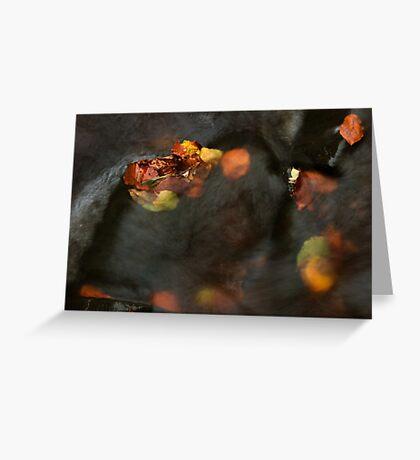 river in autumn II Greeting Card