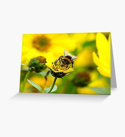 Bee #6 Greeting Card
