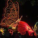 """""""Fantillusion"""" butterflies by NowhereMan"""