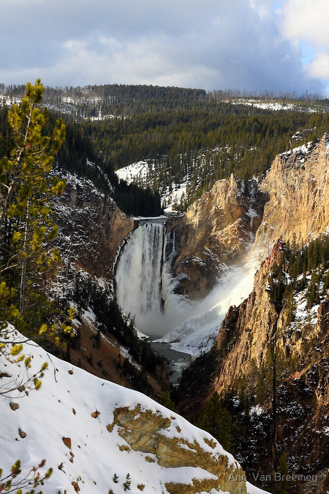 Yellowstone Canyon, U.S.A. by Ann  Van Breemen