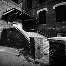 steps to a new begining _ Smith Davis Cigar Factory by james smith