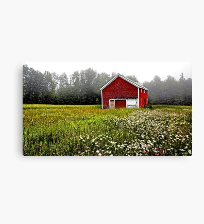 Red Barn - Field of White Daisies Canvas Print