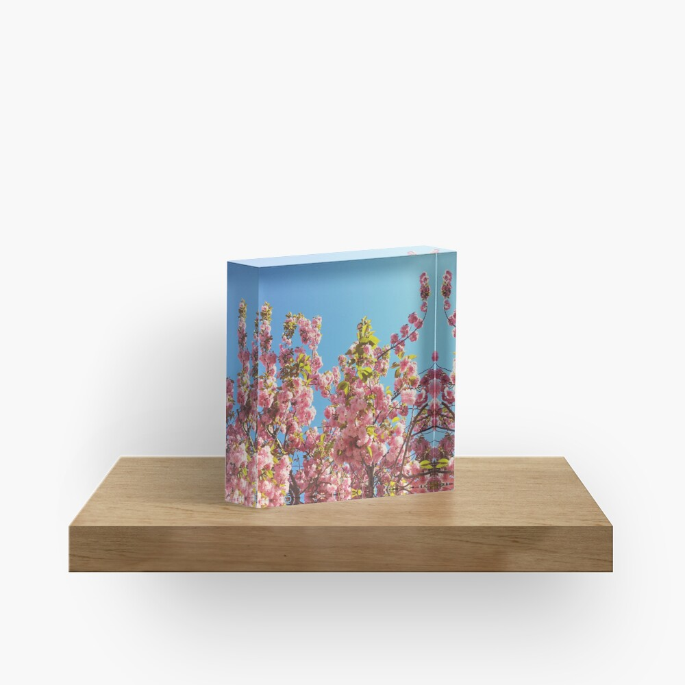 Mothers Day Floral Gift - Cherry Blossoms Photography Acrylic Block
