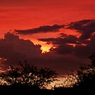 Sunset 8-19-10 by Linda Gregory