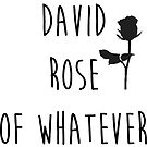 Be the David Rose of Whatever You Do by beautifullove