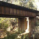 John Forrest - Railway Bridge by Stephen Horton