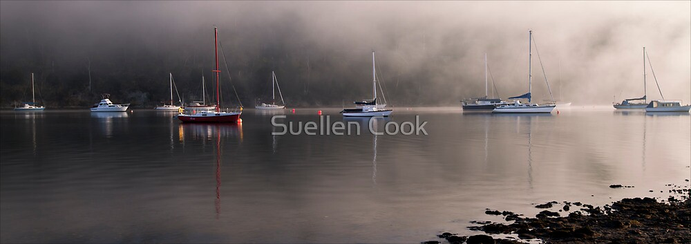Clearing the fog from my eyes by Suellen Cook
