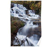Meyer's Falls, Healesville Poster