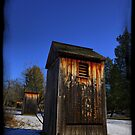 Outhouse Heaven by busidophoto