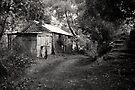 Miners Cottage, Walhalla  by Christine Wilson