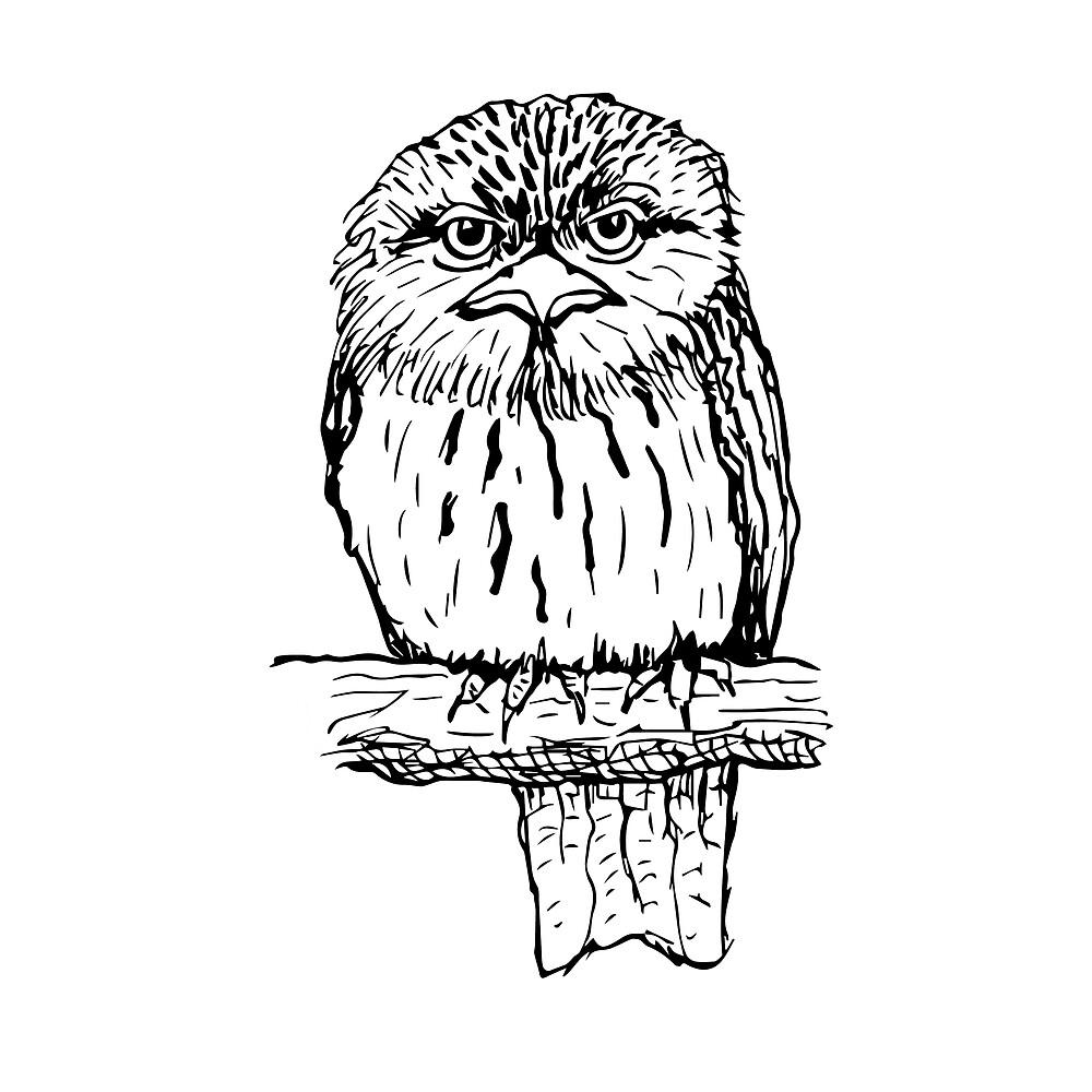 Tawny Frogmouth - Raising funds for BirdLife Australia by Paula Peeters